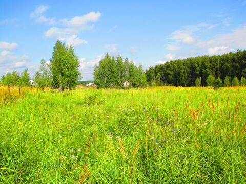 Продается земельный участок под строительство дома д.Русиновка - Фото 2