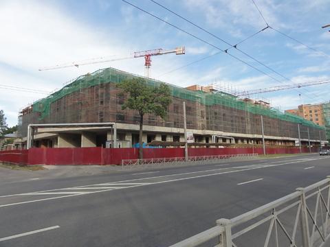 Продается двухкомнатная квартира комфорт класса в ЖК Сосновка - Фото 1