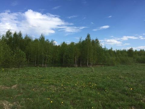 Продается земельный участок 25 соток в деревне Алексеевка - Фото 3