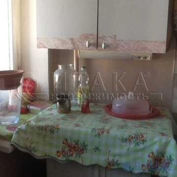 Аренда комнаты, м. Площадь Ленина, Большой Сампсониевский пр-кт - Фото 1