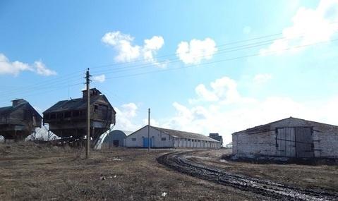 Продажа псн, Ленино, Касимовский район - Фото 2