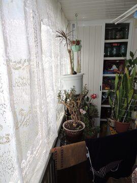Просторная трёшка в центре г. Жуковский - Фото 5