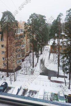 Московская область, Одинцовский район, поселок Сосны, 17, Сосны / . - Фото 1