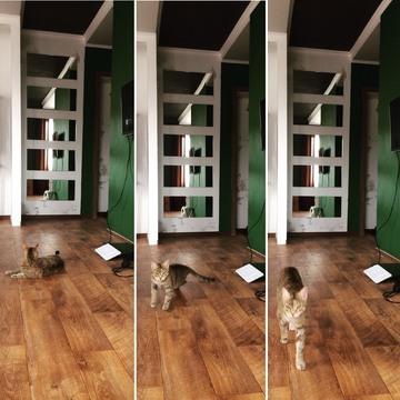 Продается 1 комнатная квартира с евроремонтом - Фото 5