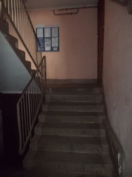 3-комнатная квартира в п. Ушаки (с/х) - Фото 2