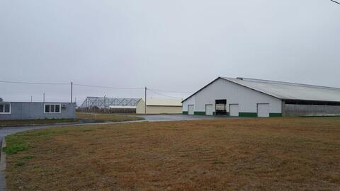 Молочно-животноводческая ферма на 2000 голов с молодняком - Фото 4