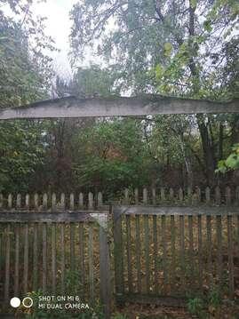 Продажа дома, СНТ Ромашка, Рамонский район, Березовая - Фото 2