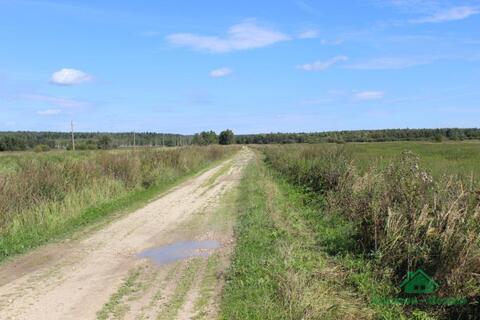 3,7 Га под сельхоз.производство - 95 км Щёлковское шоссе - Фото 2