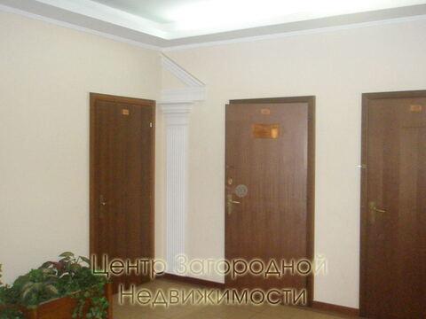 Аренда офиса в Москве, Цветной бульвар Трубная, 220 кв.м, класс B. м. . - Фото 2