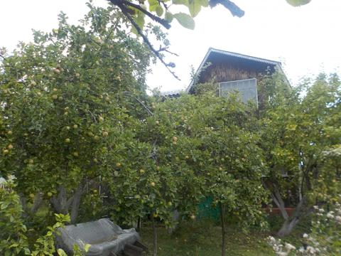 Продам дом с баней на Рубеде - Фото 3