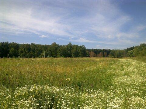 Продается земельный участок, ДНП Родник - Фото 4