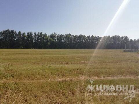 Продажа участка, Элитный, Новосибирский район, Улица Рябиновая - Фото 2