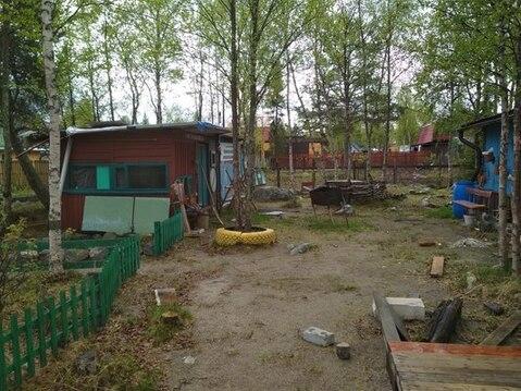 Земельный участок, Зверосовхоз, - Фото 3