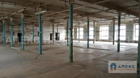 Аренда помещения пл. 997 м2 под производство, склад, , офис и склад . - Фото 5