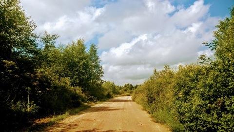 Продаю 40 гектар земли с хорошим подъездом