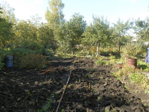 "Сад СНТ ""Янтарь"" - Фото 2"