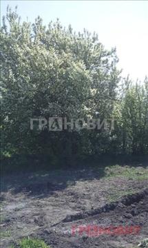 Продажа дома, Ордынское, Ордынский район, Ильича - Фото 1