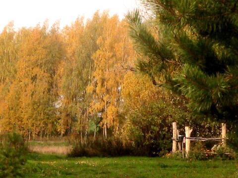 Продам участок на берегу озера в Жуково - Фото 3
