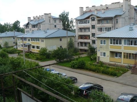 Продаётся 2 к.кв. в д. Новоселицы Новгородского р-на - Фото 1