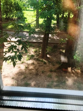 Квартира в идеально тихом зеленом и спокойном месте - Фото 5