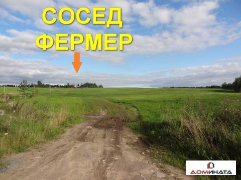 Участок 12 соток в д. Кировское - Фото 4