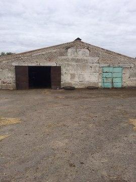 Продается ферма в Белгородской области - Фото 1