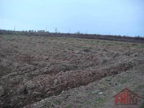 Продажа участка, Родина, Псковский район - Фото 2