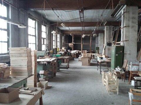 Мебельная фабрика.продажа.цеха, станки, сушильные камеры 4 Га - Фото 2