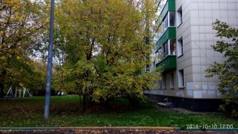 2-комн. кв. 47 м2, Матроса Железняка д. 11а, этаж 2/12 - Фото 1