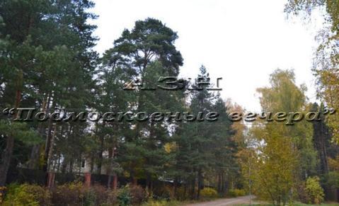 Ярославское ш. 12 км от МКАД, Пушкино, Участок 10 сот. - Фото 3