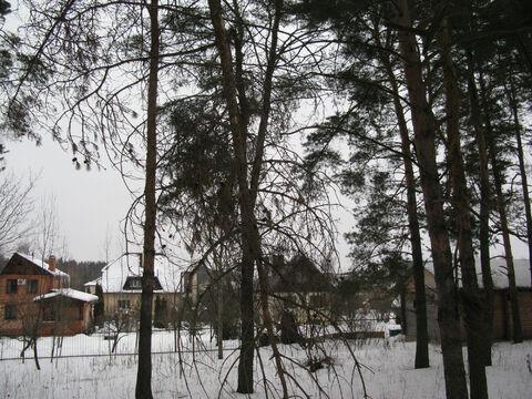 Ильинское ш. 26км. с Дмитровское лесной участок 10 соток - Фото 4