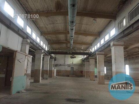 Сдается производственное помещение, можно также под склад использовать - Фото 3