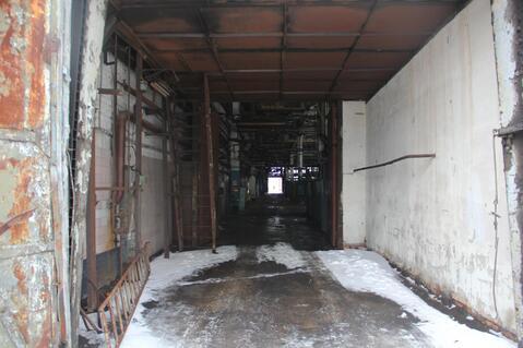 Сдам производственно-складскую площадь 5000 кв.м. - Фото 5