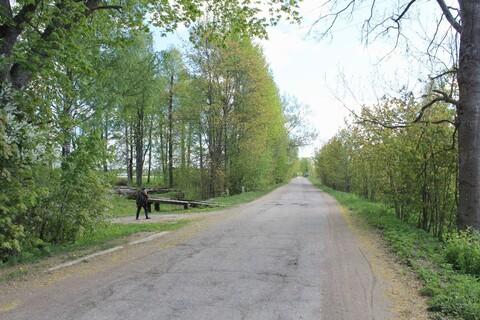 Участок в деревне Гдовского района - Фото 1