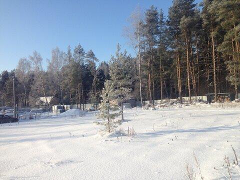 Продается земельный участок в черте г. Пушкино на берегу Учинского вод - Фото 5