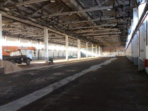 Продам складской комплекс 7500 кв.м. - Фото 4