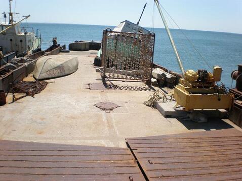 Мидийное хозяйство в Крыму (Керчь) - Фото 2