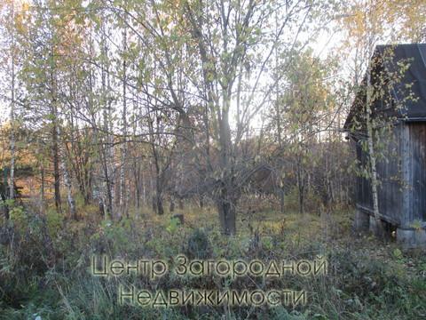 Участок, Ярославское ш, 41 км от МКАД, Никулино д. (Пушкинский р-н). . - Фото 3