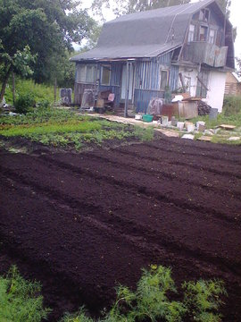 Продаю садовый участок - Фото 3