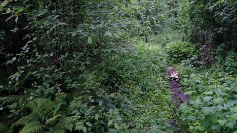 Два участка по 6 соток в Щелковском районе - Фото 1