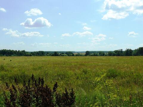 Озеро надежды дачный поселок Спицино д. участок 38 га Ясногорский р-н - Фото 4