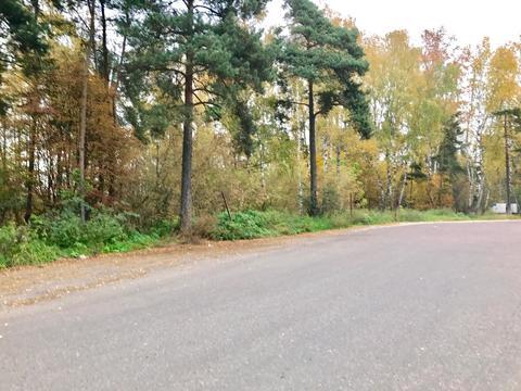 Участок 18 соток п. Родники 14 км от МКАД - Фото 2