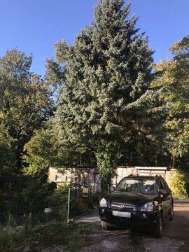 Купить двухкомнатную квартиру в Светлогорске - Фото 3