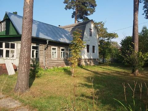 Шикарный участок 29 сот. с соснами в п. Загорянский, 17 км. от МКАД - Фото 3