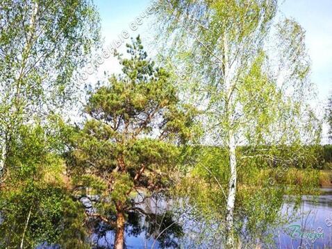 Горьковское ш. 57 км от МКАД, Павловский Посад, Участок 12 сот. - Фото 3