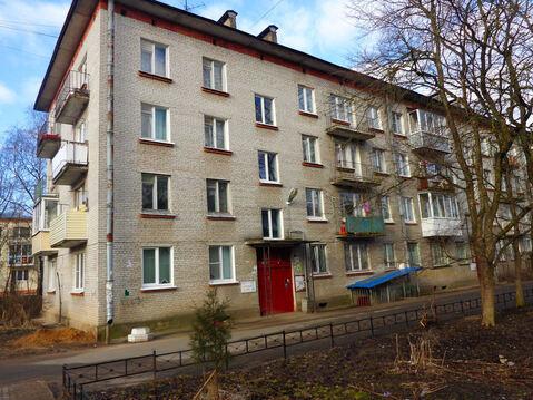 Уютная 2-х ком. квартира рядом с Красным Селом - Фото 2