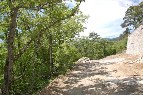 Видовой земельный участок под ИЖС в Массандре, юбк - Фото 3