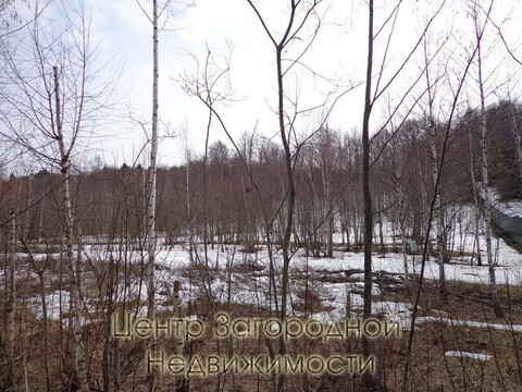 Участок, Новорижское ш, Рублево-Успенское ш, Минское ш, 43 км от МКАД, . - Фото 4
