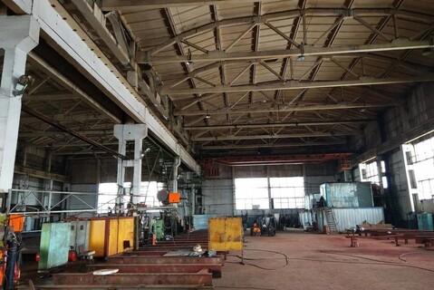 Произв-складское помещение 4000 м2 в Раменском, Михалевича 49 - Фото 4