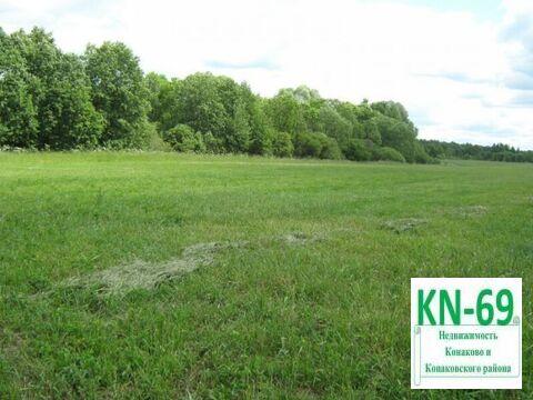 Экология национального парка Завидово - более 7 Га земли для фермеров! - Фото 4
